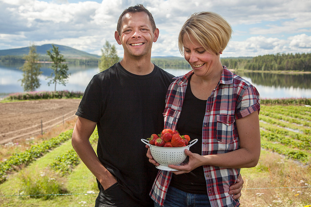 Glad man och kvinna står i jordgubbslandet med nyplockade jordgubbar i en bunke. I bakgrunden skymtar en blank sjö och blånande berg.