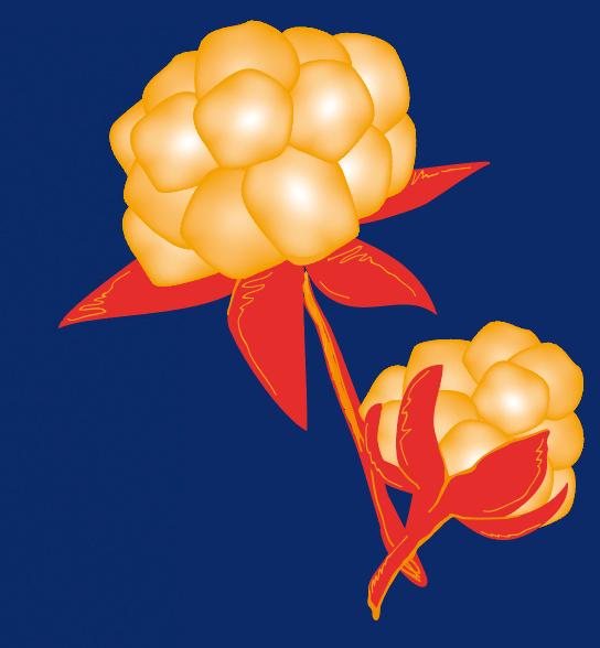 illustration av brandgula hjortron med röda blad mot blå bakgrund