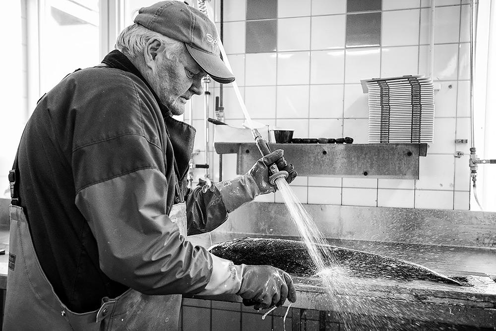 en man med keps sprutar bort fiskfjäll från en lax han fileat