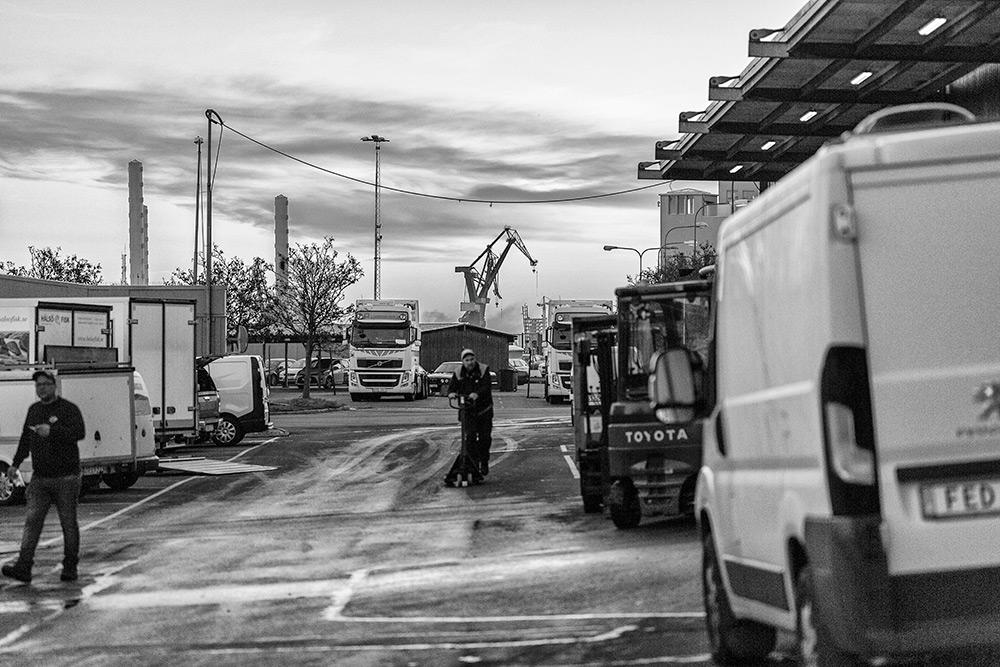 det dagas utanför fiskauktionen, lastbilar, truckar och kranar syns i bakgrunden