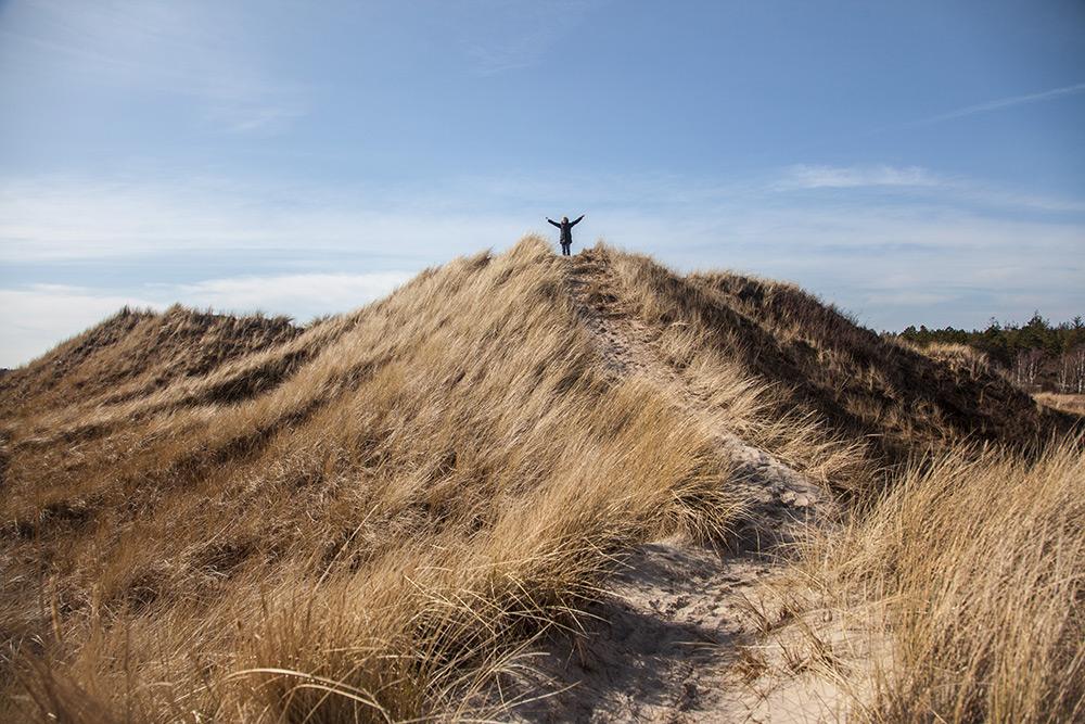Sanddyner med gult långt torrt gräs som ser ut som berg mot blå himmel. På toppen mitt i bild står en människa och reser armarna uppåt.